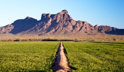 Picacho Peak sunrise