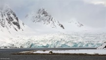 Svalbard, Before the Storm